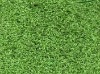 PP Leisure Artificial Grass