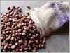 fresh chestnut in China