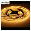 12V LED Lights Strip for Outdoor Lighting
