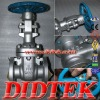 DIDTEK Rising Stem Wedge ANSI API WC6 Gate Valve