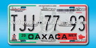 Mexico Number Plate