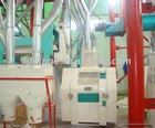 8T-200T Maize grain mill processing line