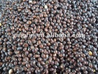 2011 new good quality black millet