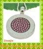 New design zircon pink stone jewelry