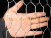 Electro Galvanized Hexagonal Chicken Wire Mesh