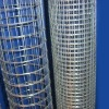 square welded wire mesh/fence net (factory)