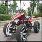 110/125/150/250cc HOT Quad bike/Racing ATV