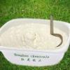 Wheat series products 06-GRF-02 Vital wheat gluten Food Grade
