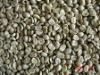 China supplier raw arabica coffee bean plantation for sale!
