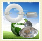 low frequency induction series 40-300W round pendant luminaire factory lamp