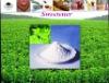 china stevia/stevioside/sugar/STV90%