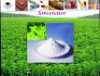 china stevia/stevioside/sugar/STV90%