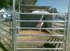 horse yard