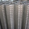 high quality galvanized welded wire mesh (factory+exporter)