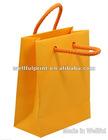 Luxury Paper Shopping Bag (WF-17010)