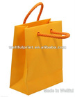 Luxury Paper Shopping Bag (WF-17010)