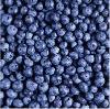 Iqf Blueberry (Grade A)
