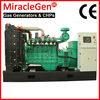 CE approved Natural Gas Generator 10-15kW