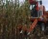 harvester combines
