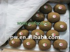 Chinese Fresh Hayward Kiwi fruit