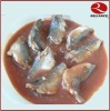Sardine in tomato sauce