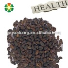 Healthy Natural Chinese Privet extract