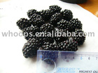 new crop frozen blackberry