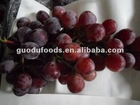 The New Crop Red Grape