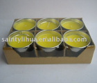 Outdoor Citronella Candle in Tin holder - HZ706