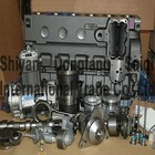 Auto diesel engine spare parts