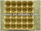 Egg Box (30 cavities )