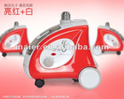 1600w steamer for ironing clothes/silk/curtains with two switches