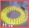 24V 2 inch Rope Light Retail gift box
