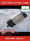 IP66 High Quality LED Cobra Road Lights 100W