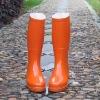 Waterproof Boots (Fashion)