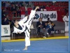 Taekwondo Mat
