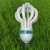 ENERGY SAVING LAMPS cfl emergency light