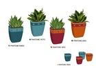 Colourful ceramic pot