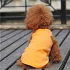 Colorful Blank Dog T-shirt