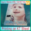 Printing on KT Sheet