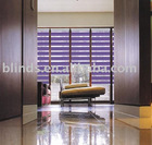 Interior decoration dual sheer blinds