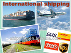 logistics for cargo import by Co-logistics