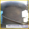 8*55SWS+FC/IWR line contacted wire rope(Ungalvanized and Galvanized)