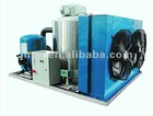 Flake Ice machine for vegetables, fish, meat