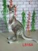 animal decoration ( kangaroo Decro )