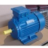 Y2 series 3-phase induction electric motor