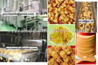 Germany designed oil curtain frying equipments production line