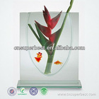 transparent acrylic ornamenal fish tank