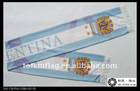 Argentina Football Club FC Scarf