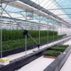 transparent color plastic greenhouse covering film